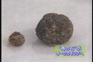 blog200608.n.jpg