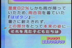 blog20060902q.jpg